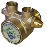 "Fluid-o-Tech brass pump 300 lph / 2 x IG 3/8"" NPT"